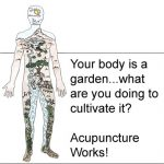 Acupuncture for Low Libido