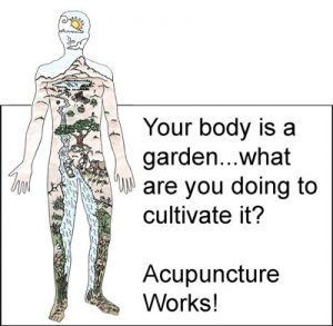 Acupuncture in Minneapolis