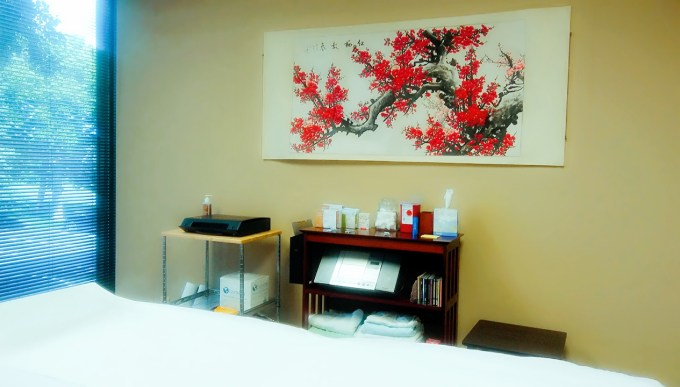 Acupuncture in Edina MN - treatment room